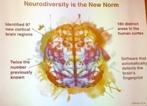 SENG Neurodiverse